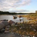 Rönnören, Schweden