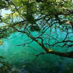 Am Bleder See