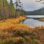 Syöte Nationalpark (Finnland)